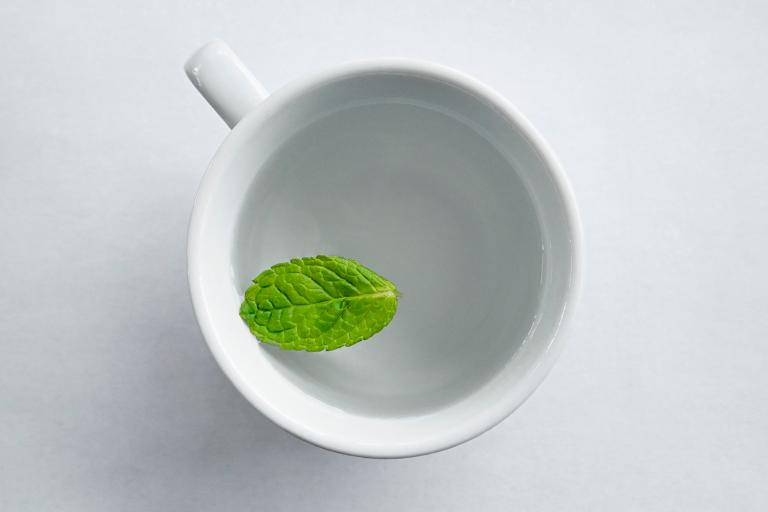a mint leaf floating in a mug of water